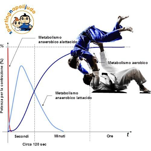 Classific.ne bioenergetica e neuromotoria del judo  - Articoli  - sporting napoli articoli